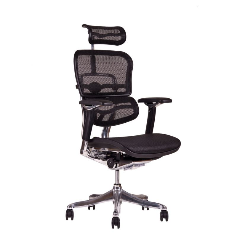 Kancelářská Židle Ergohuman Luxury