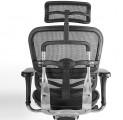 Ergonomická Židle ERGOHUMAN